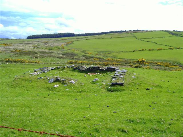 Arrasey Plantation from Glenmaye backroad