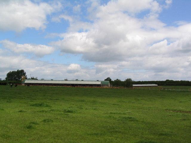 Poultry units near Home Farm