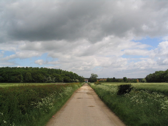 Track to Woodlands Farm
