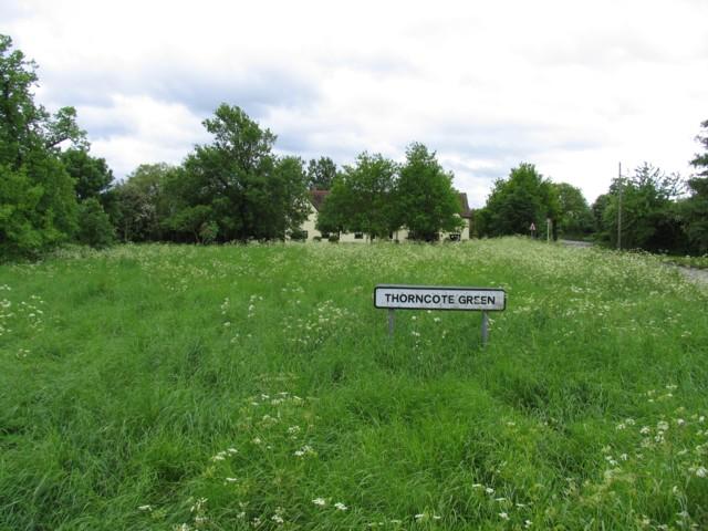 Thorncote Green