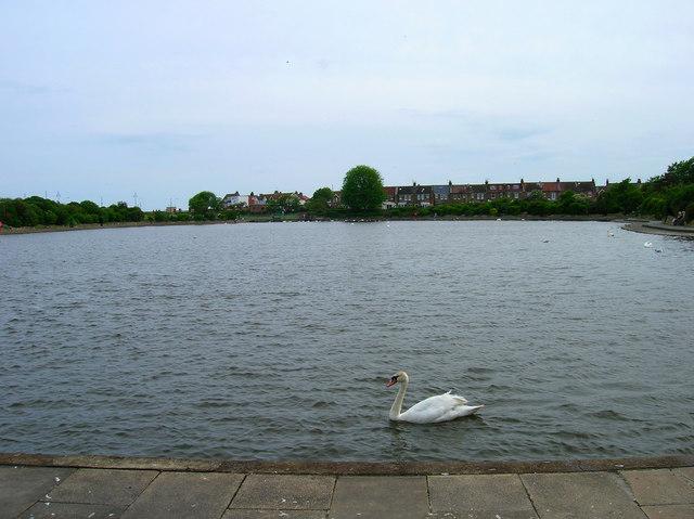 Crumbles Pond, Princes Park