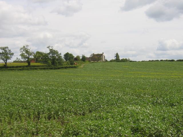 Hoden Farm