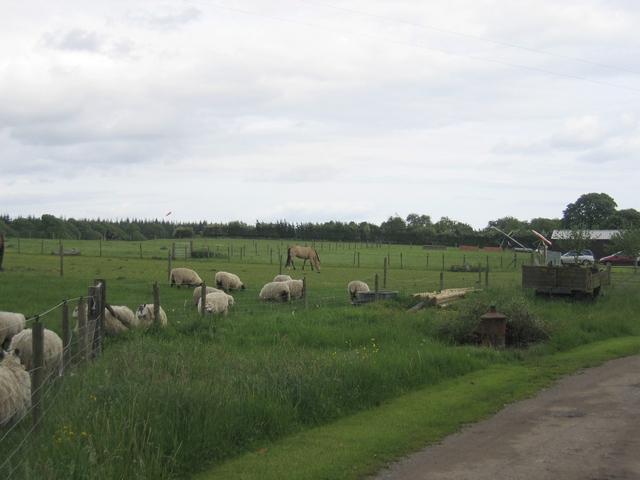 Pound Green Airfield