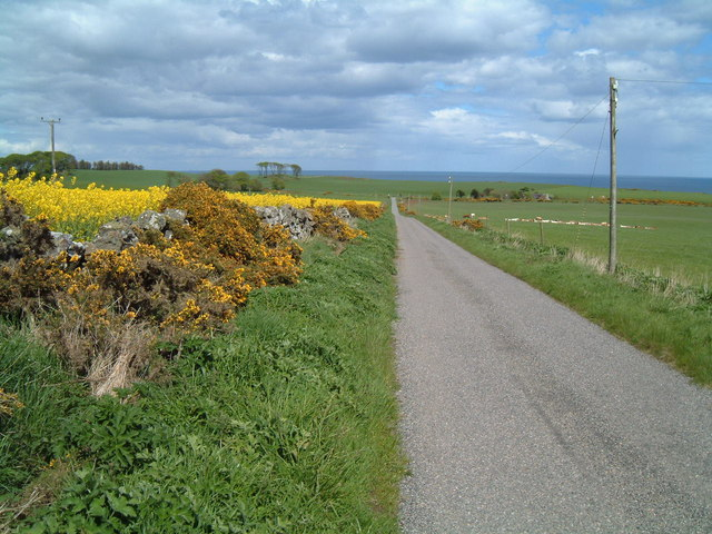 Road near Crawton