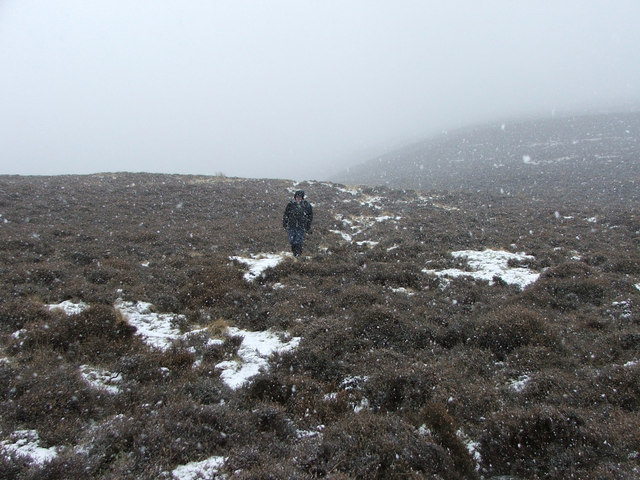 The heathery north-west ridge of Tinto