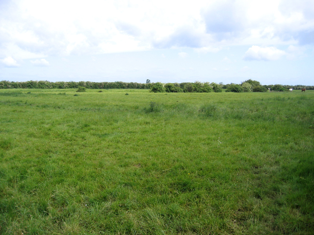 Belsar's Hill, Willingham, Cambs