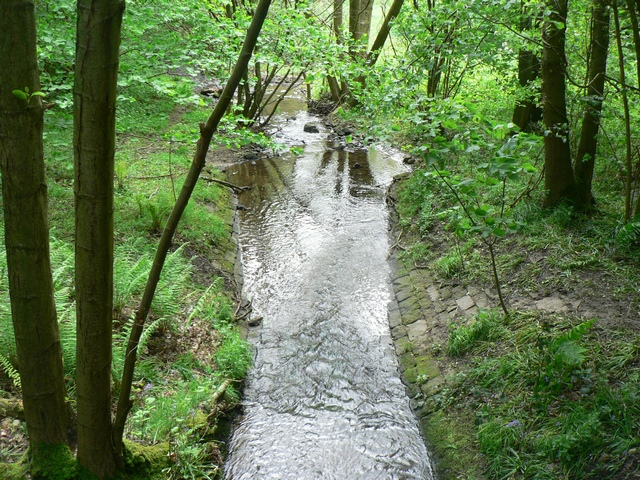 Greystone Beck in Lindley Wood