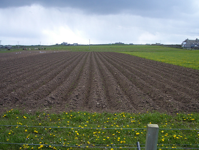 Freshly ploughed land