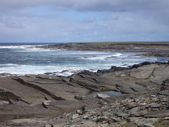 West coast of North Ronaldsay