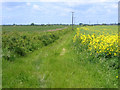 TL4665 : Permissive footpath, Landbeach, Cambs by Rodney Burton
