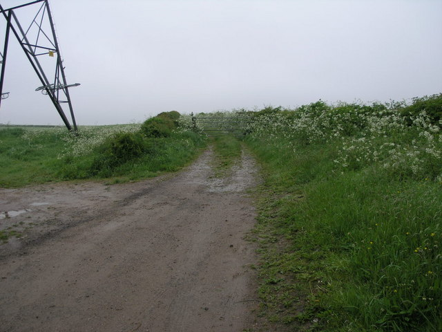 Pylon and Path