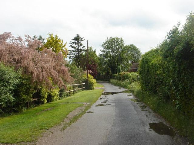 Bridleway, Dorchester
