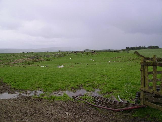 Farmland School Lane