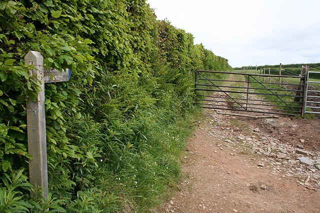 Lynton & Lynmouth: bridleway to Cheriton
