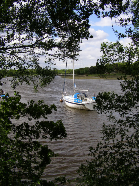 Beaulieu River from the riverside walk