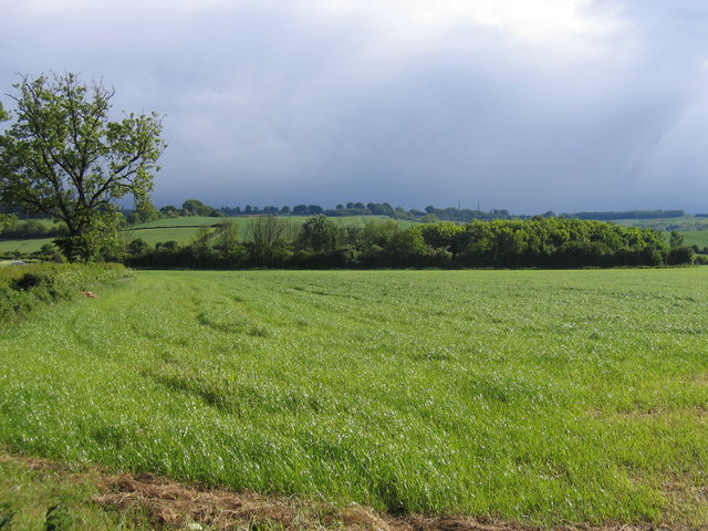 View towards Ilmington Hill