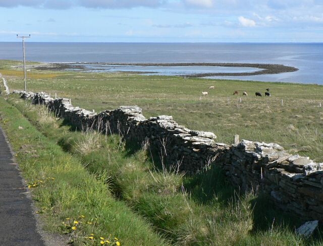 Roadside view, Papa Westray.