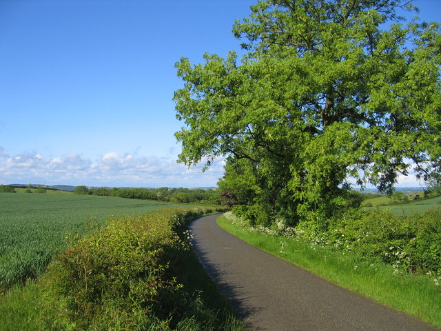 Lane to Ilmington