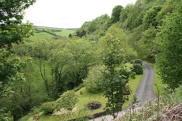 Lynton & Lynmouth: valley below Dean