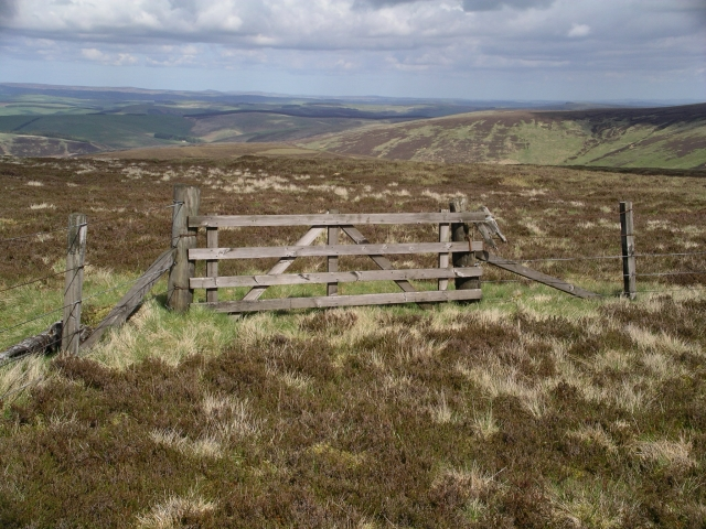 Fence and gate, Windlestraw Law