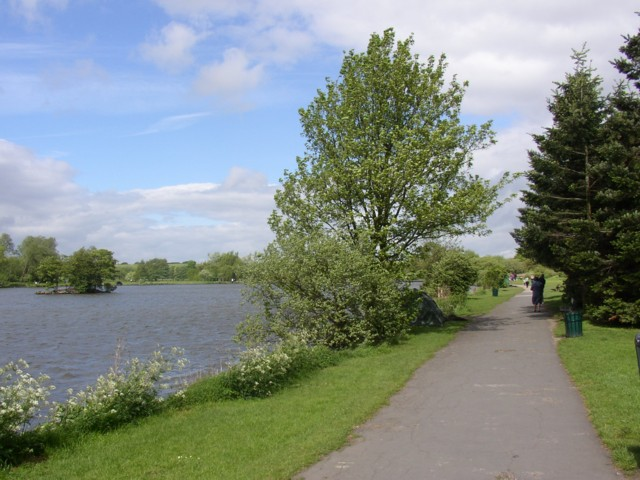 South east shore of Yeadon Tarn