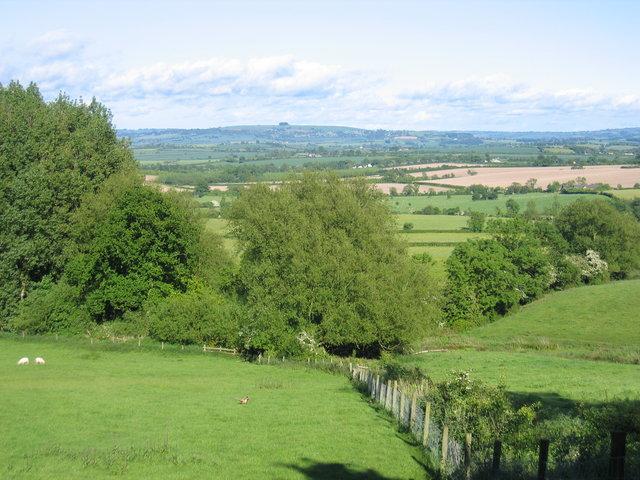 View towards Shipston on Stour