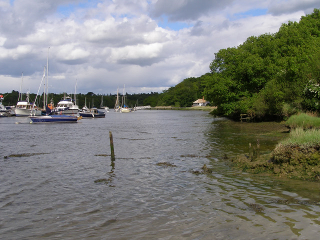Clobb Copse on the southern shore of the Beaulieu River