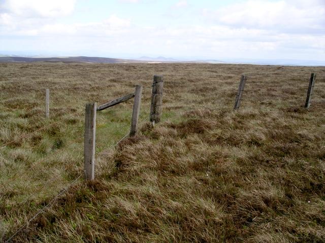 Fence angle, Pringle's Green