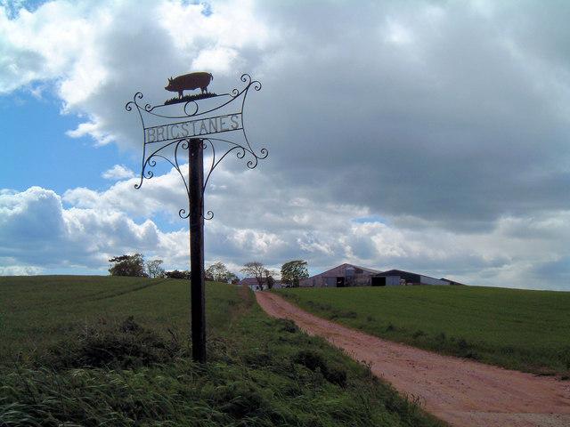 Farm road to Brigstanes Farm
