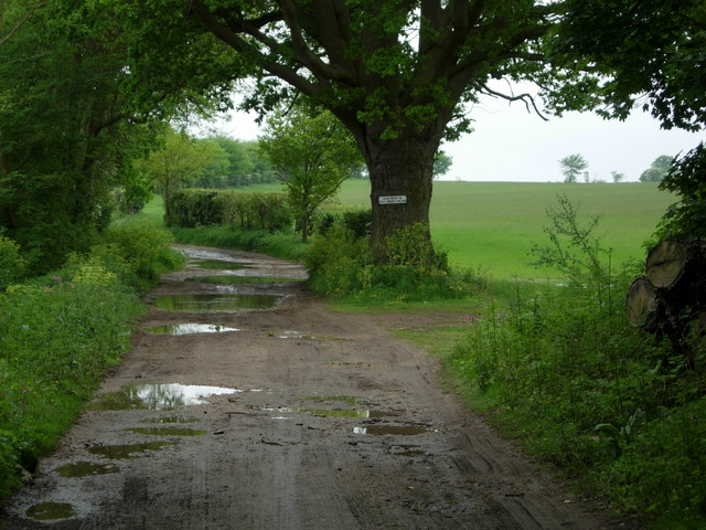 Bridleway to Snape