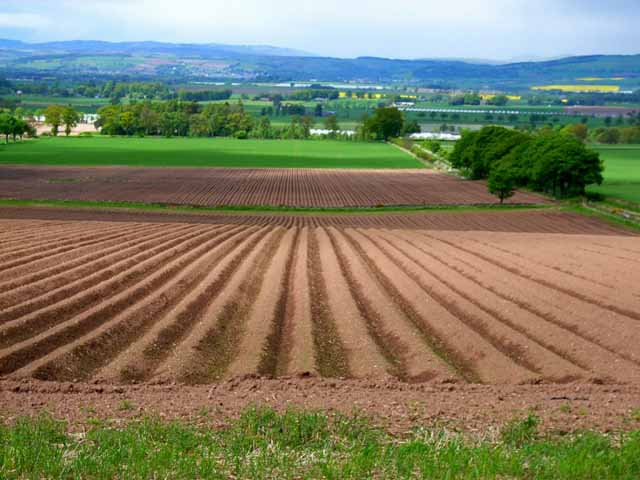 Ploughed field looking out over Strathmore