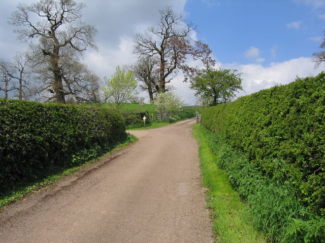 Country Lane near Oversley Castle, Wixford