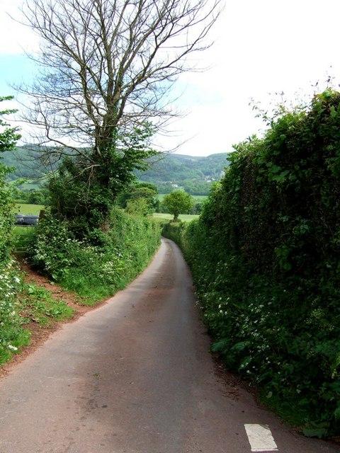 Chisland Lane near Luccombe