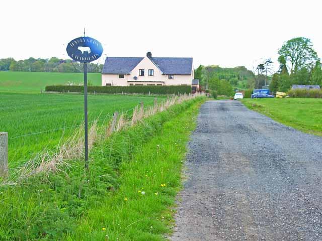 Hallyards near Alyth