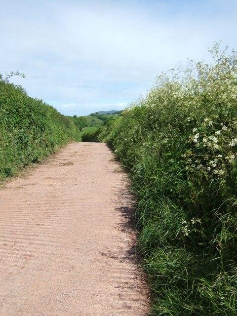 Lane to Well Farm