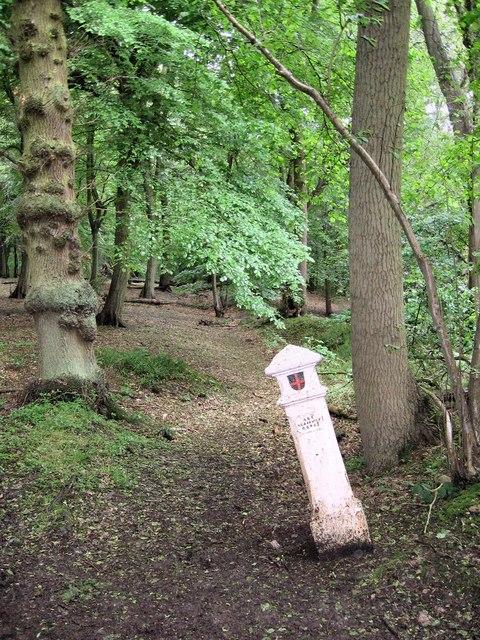 Coal Tax post no 24, Wormley Wood.