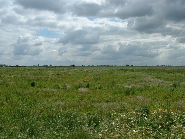 Holbeach Drove Common