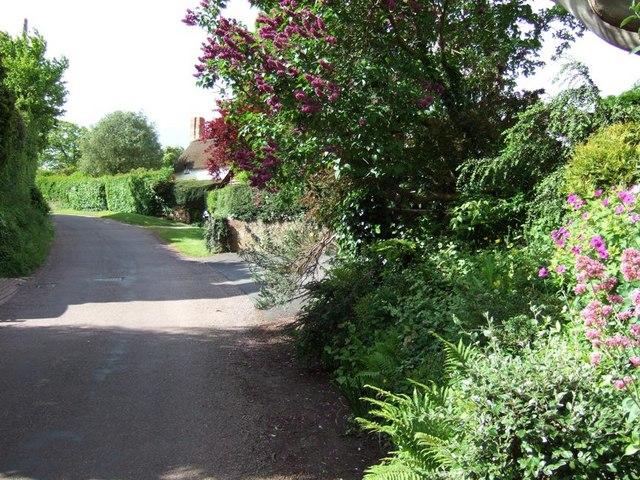 Wootton Courtenay - Cottage & Lane
