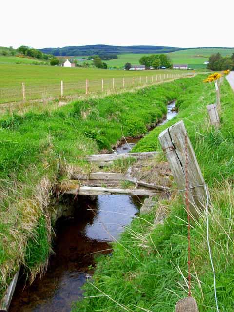 Roadside ditch near Mains of Glenfarquhar