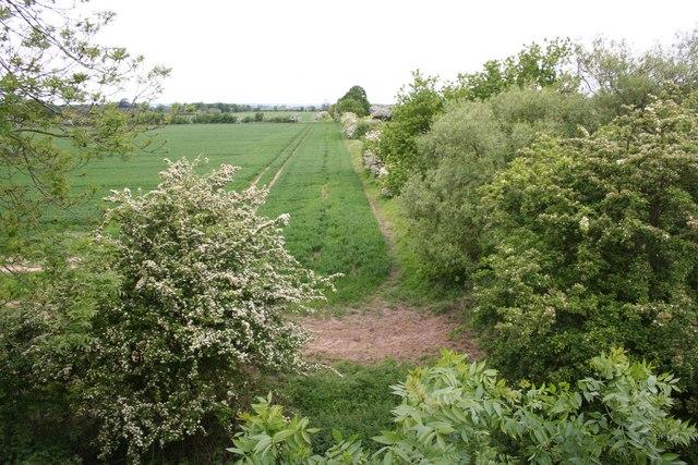 Coleby Low Fields