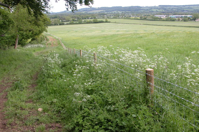 The Monarch's Way
