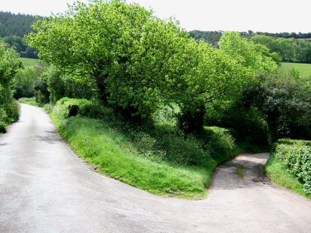 Lane to Tivington Knowle