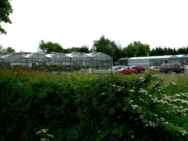 �Greenside Up� Nursery, Back Lane