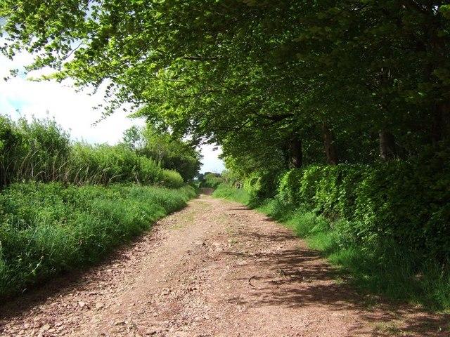 Spangate Lane