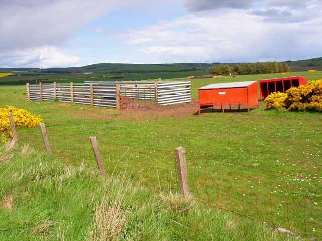 Livestock pens on Hill of Gyratesmyre