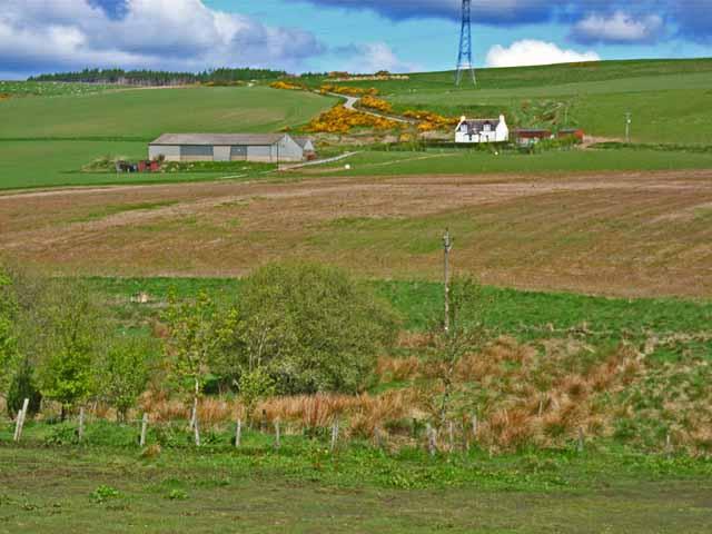 Quithel Farm