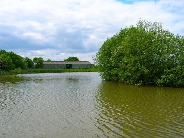 Pond, near Veals Farm