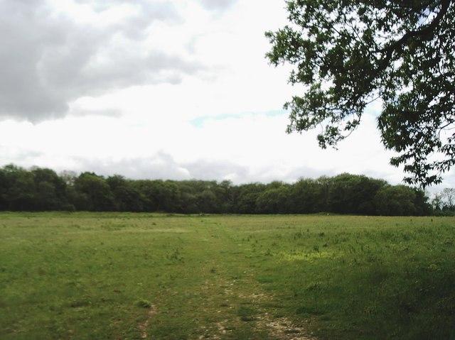 North Downs Way facing Horseholders Wood, near Halling
