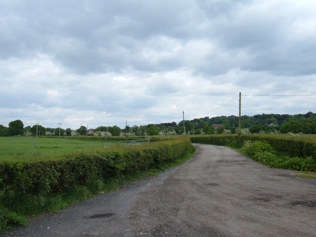 Farm track from Field's Farm