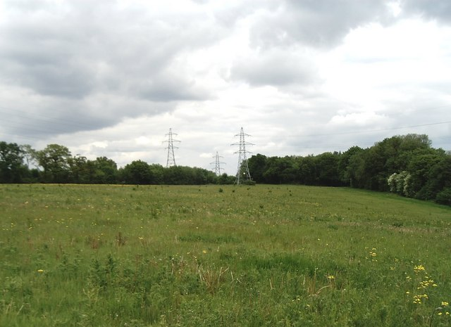 Pylons seen from the North Downs Way, near Halling